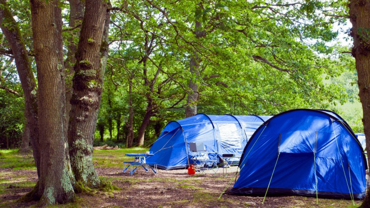 What Is The Best Coleman Tent In The World Right Now
