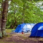 Coleman Montana vs Red Canyon: What is the best Camping tent?