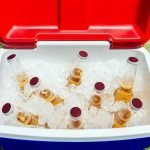 How to Choose the Best Ice Packs for Coolers?