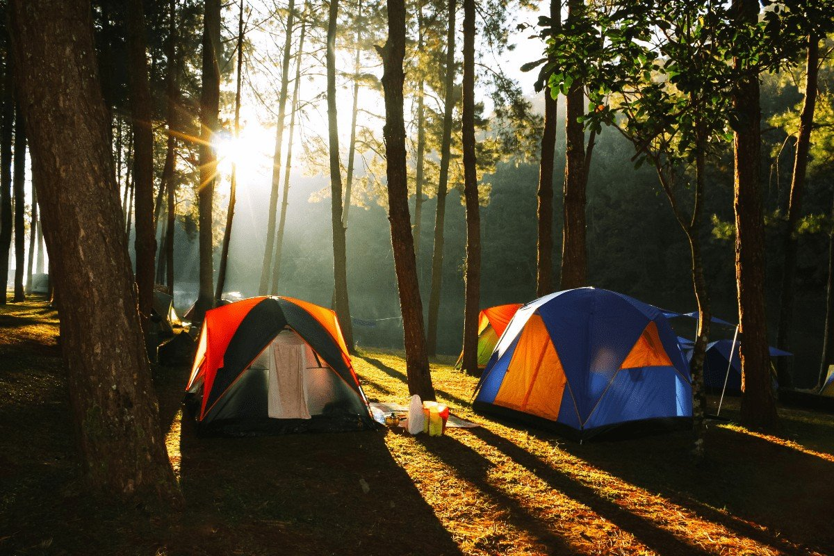 Best Camping Spots in North Georgia